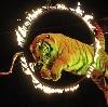 Цирки в Сергиевом Посаде